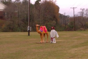 Plastic Camel Rides two dollars for charity (not)